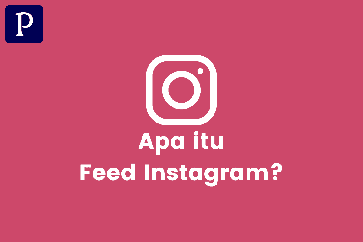 Pengertian Feed Instagram