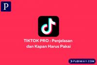 Penjelasan tentang Tiktok Pro