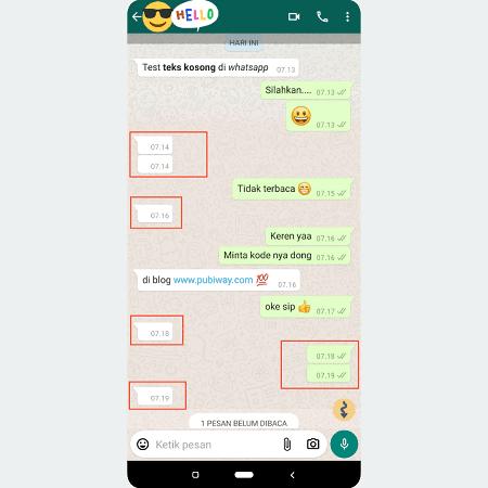 Bukti Chat Kosong di Whatsapp