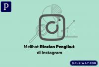 Rincian Pengikut Instagram