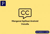 Voicella