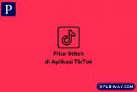 Stitch di Tiktok