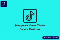 Mengecek Views Tiktok secara realtime